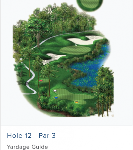 Illustration of Burnt Pine's 12th hole. Par 3.