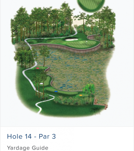 Illustration of Burnt Pine's 14th hole. Par 3.