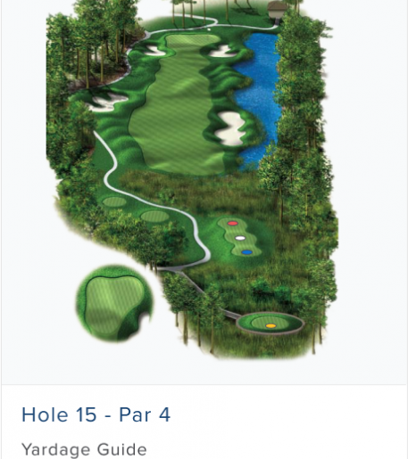 Illustration of Burnt Pine's 15th hole. Par 4.