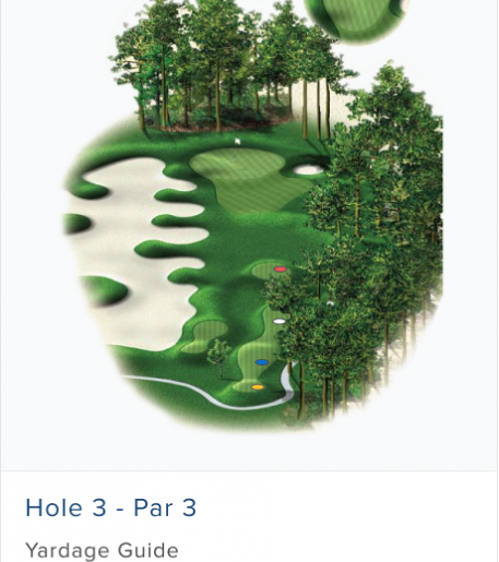 Illustration of Burnt Pine's 3rd hole. Par 3.