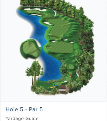 Illustration of Burnt Pine's 5th hole. Par 4.