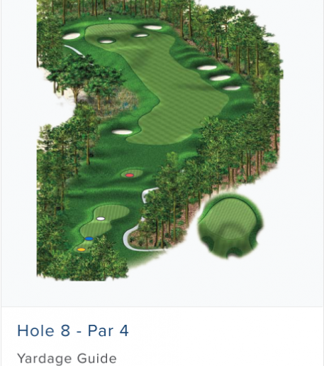 Illustration of Burnt Pine's 8th hole. Par 4.